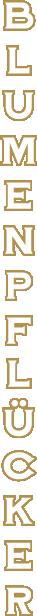 Asset logo.png