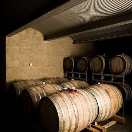 Burgundy Influence