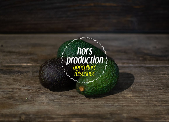 Avocat (kg)