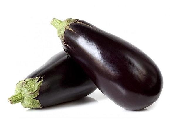 Plant d'aubergine
