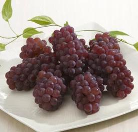果物の雑学