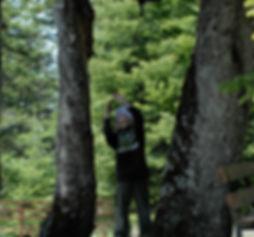 CMH_Forest_11.jpg