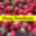 Otway Strawberries logo.png