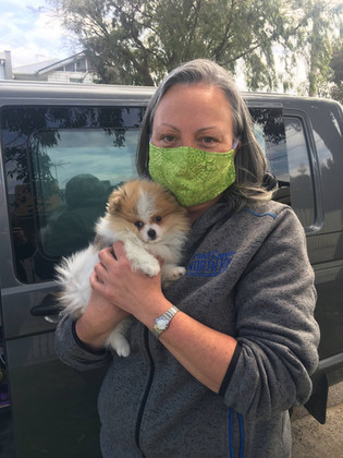 Pet Transport - Precious Package Arrives Home
