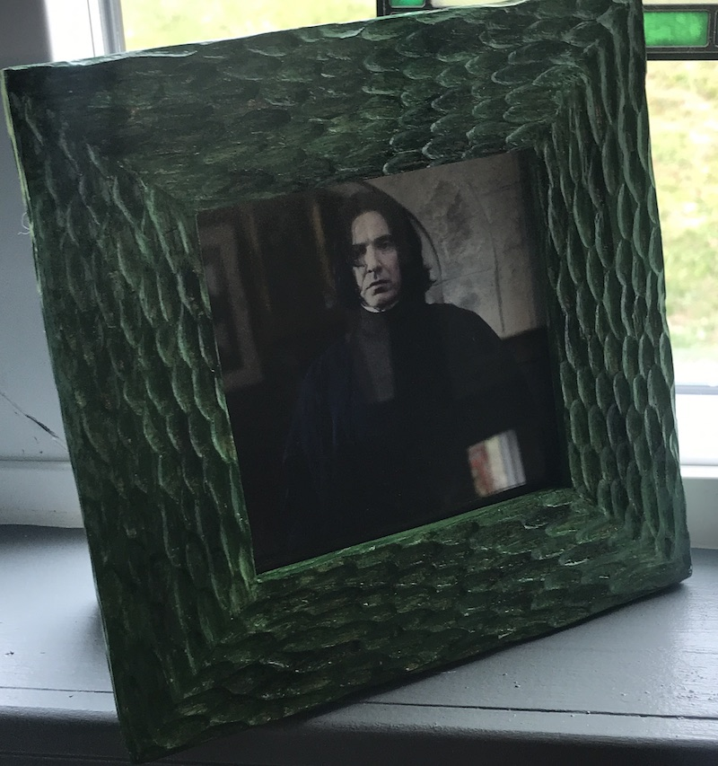Slytherin Snape Photo