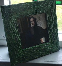 Slytherin Snape Photo
