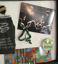 Slytherin shadow box