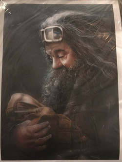 Hagrid and baby Harry poster