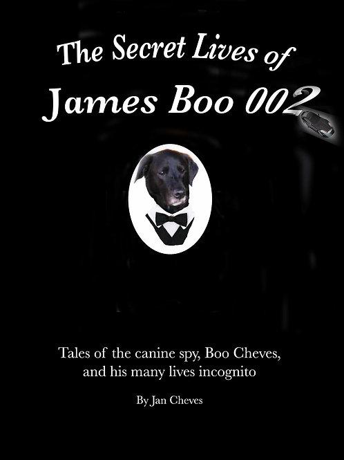 The Secret Lives of James Boo 002