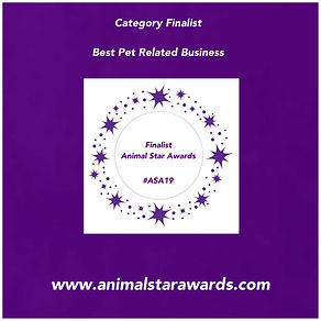 pet related biz award.jpg