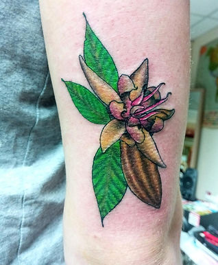 Black and grey tattoo artists in london, traditional tattoos, best camen tattoo studios, swallow tattoos, hand tattoos, tattoo artists in london, best tattoo studios in london, open late 7 days a week, I hate tattoos, hand tattoos, face tattoos, custom tattoo artists, holloway tattoo studios, tree tattoos, bird tattoos, sexy tattoos, colour tattoos, cute tattoos, kaiwai tattoos, tattooed girls, finger tattoos, alchemy symbols, minimalist tattoos, flower tattoos
