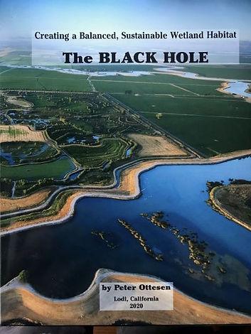 WPF-The-Black-Hole.jpg