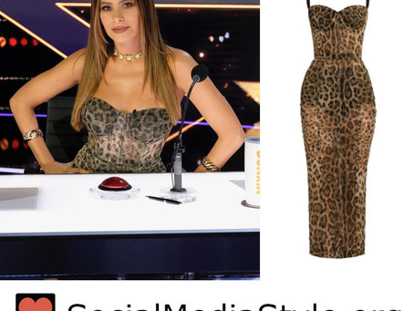Sofia Vergara's leopard print dress from America's Got Talent