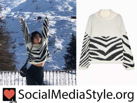 Vanessa Hudgens' zebra sweater