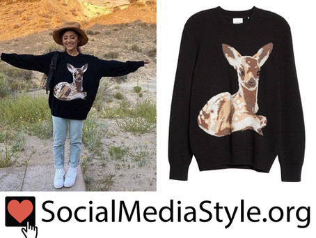Ariana Grande's baby deer sweater