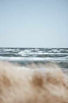 Skagen - hav i fokus