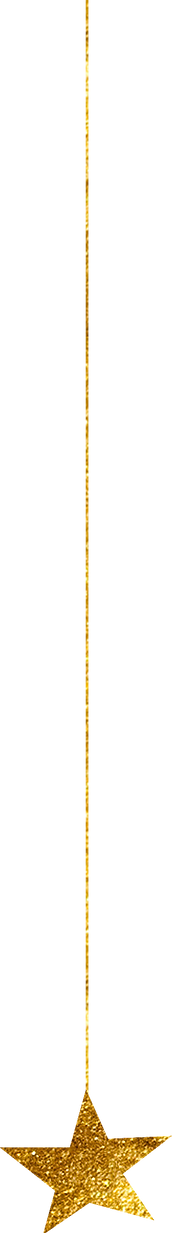 gold-star_0041_x.png