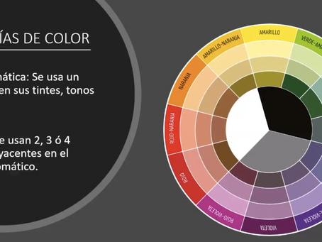 Capacitación Virtual Floral Armonía de Color