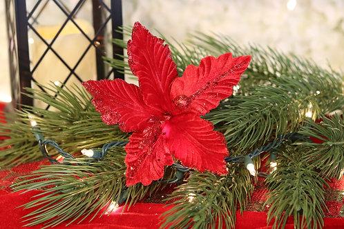 Poinsettia Roja Velvet