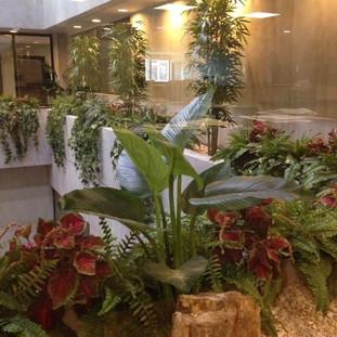 Jardin interno en firma de abogados. Tres pisos de lobby interno.