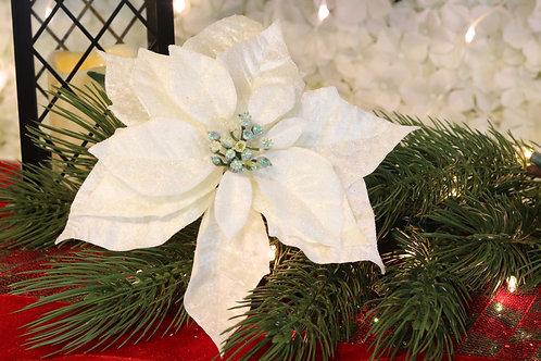 Poinsettia blanca velvet