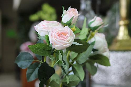 Rosas textura natural