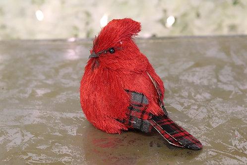 Pájaro cardenal rojo con cuadros