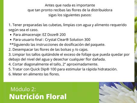 Nutrición Floral