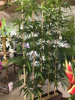 Cortina de Bambú ideal para divisiones de áreas