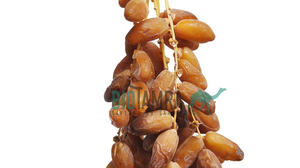Dattes fraîches en régime (Bio) Tros verse dadels / 4kg (Deglet-Nour Algérie)