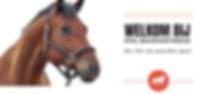 Hafaro stal maaskanthoeve paardenstal lith