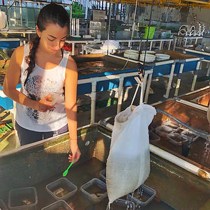 Romo_Rossana_Aquariums_STRI.jpg