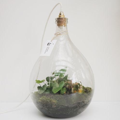 Biosfeer 34 liter met led-verlichting