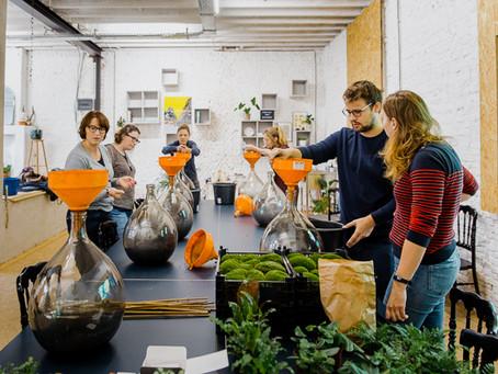 Biosferen bij Studio Fluo (Antwerpen)