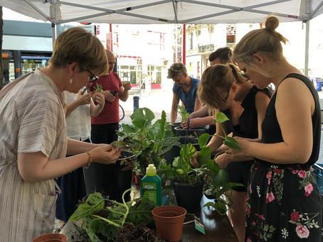Plantenworkshop in Gent bij Piet Moodshop