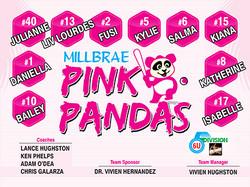 6u pink pandas.jpg