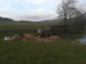 Tidied Storm Damage