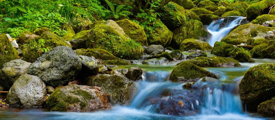 水道水の水質基準変更について