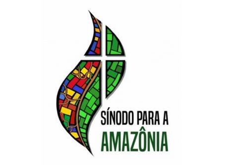 Artigo: respostas sobre porquê realizar o Sínodo para a Amazônia