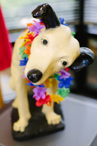 Brand photography of dog statue with a hawaiian ley in Research Triangle Park, NC