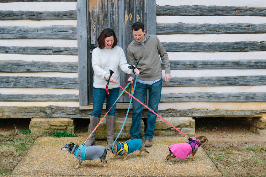 Family portraits of couple with three dogs in Wake Forest, NC