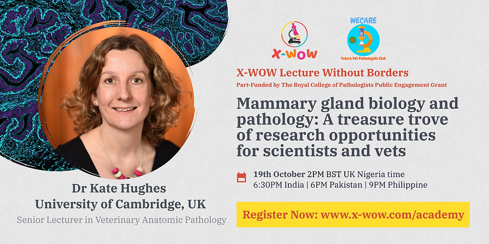 Lecture by Dr Kate Hughes (University of Cambridge)