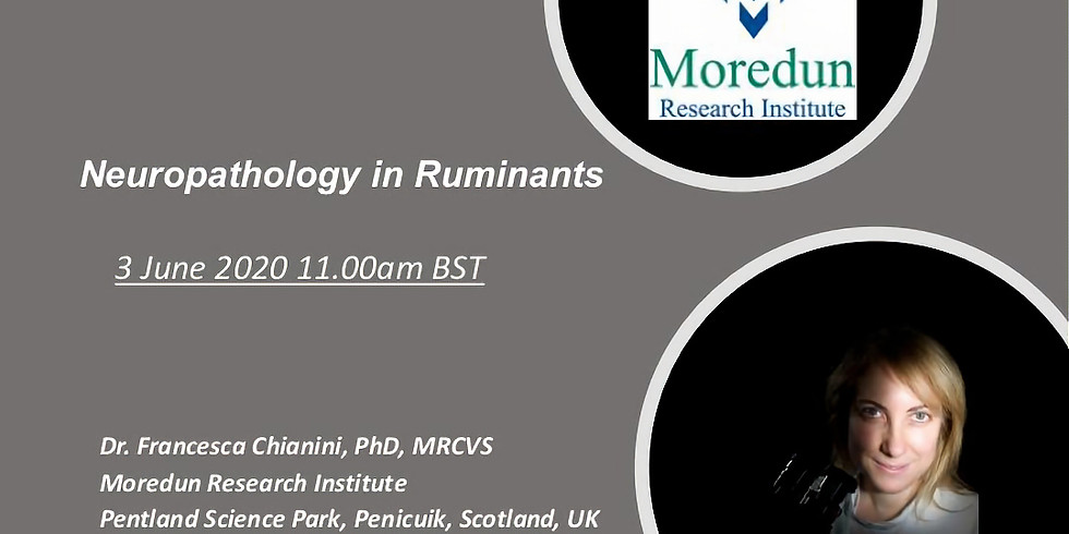 Neuropathology in Ruminants by Dr Francesca Chianini