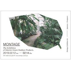 montage.jpg