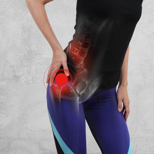 Hip skeletal muscle diagram