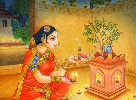 the blessed tulsi.