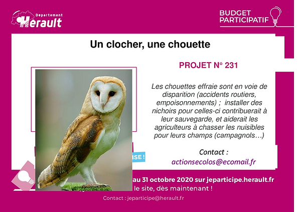 Flyer-A5-chouettes.png