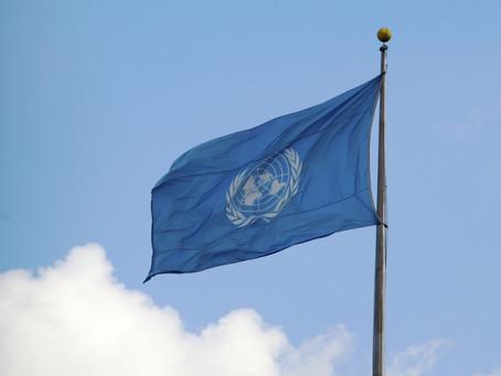 Protection de la biodiversité : un constat d'échec pour l'ONU