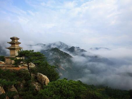 Tea Time Tales - Legend of Namsan Mountain