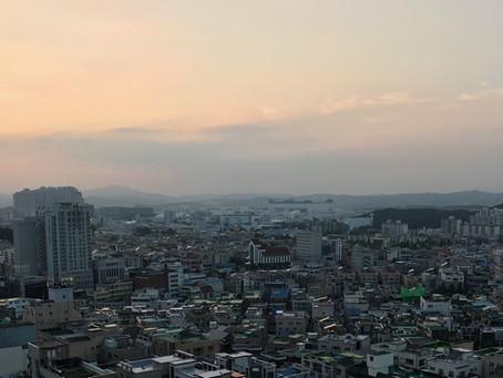 Unusal Korean Teas
